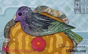 BirdCloseup