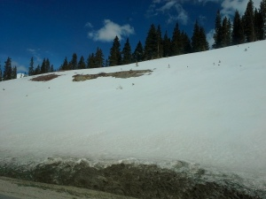 SnowonRoadside